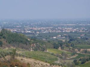 Castel Bolognese, il capitano Marella (Cc): «Furti in calo, cittadini fondamentali»